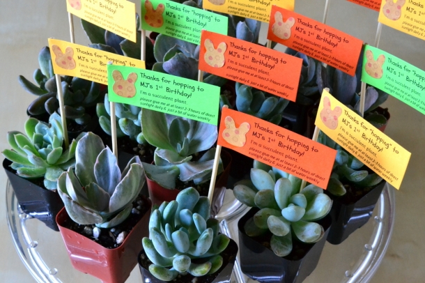 mj s 1st birthday party favors the republic of succulents